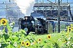 /stat.ameba.jp/user_images/20210722/13/glock132/94/9d/j/o1690112714975747633.jpg