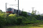 DF113DSC_9315-2.jpg