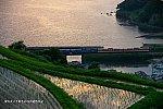 f:id:yuseiphotos:20210804222322j:plain