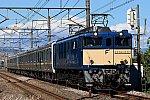 EF64-1032 E131系配給 配9728レ 新前橋~井野間