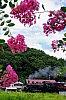 /stat.ameba.jp/user_images/20210814/09/ys3338/04/5e/j/o0719108014986581579.jpg