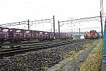 DF117DSC_0061-2.jpg