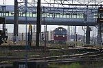 DF115DSC_0200-1.jpg