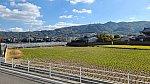 /stat.ameba.jp/user_images/20210906/12/penguin-suica/f7/d6/j/o1080060714997108545.jpg