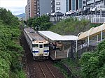 P1230493_志井公園_R
