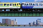 IMGP6356-20210912.jpg