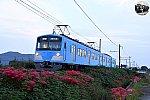 f:id:hato_express:20210923211352j:plain