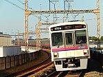 /stat.ameba.jp/user_images/20210928/07/bonsai-moyashi/11/42/j/o1080081015007705830.jpg