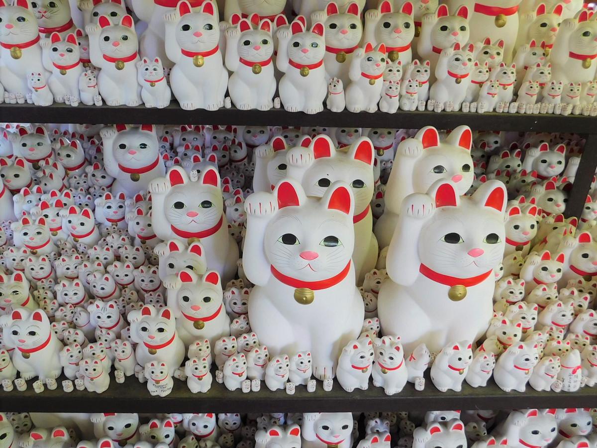 モデルとなった豪徳寺の招き猫。境内には、招福観音を祀る招福殿があり、その脇にある棚を中心に数多くの招き猫が奉納されています(読者提供)