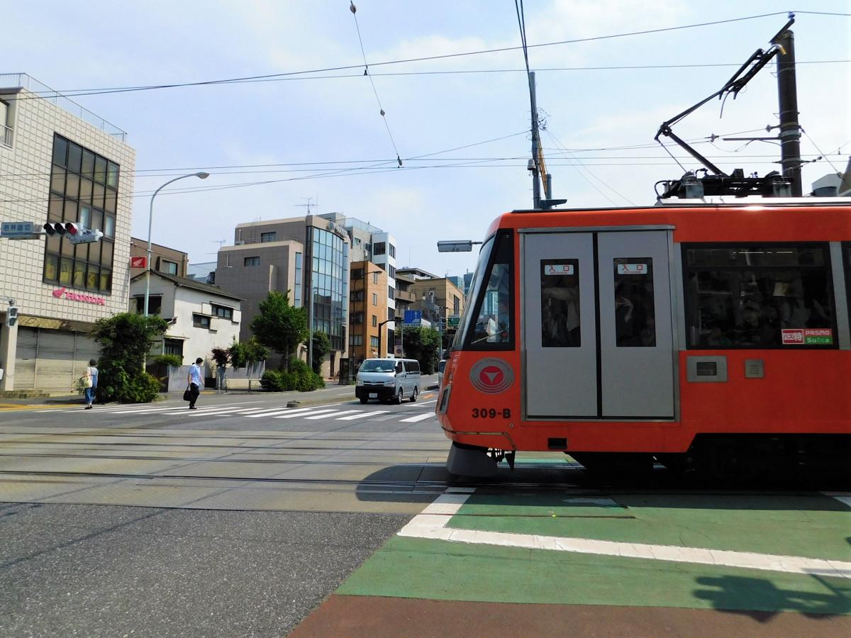 環七通りと交差する若林踏切。警報機や遮断機はなく、信号機が踏切に代わる役を担っています。写真は、道路の信号が赤、列車の信号が青の状態での一枚