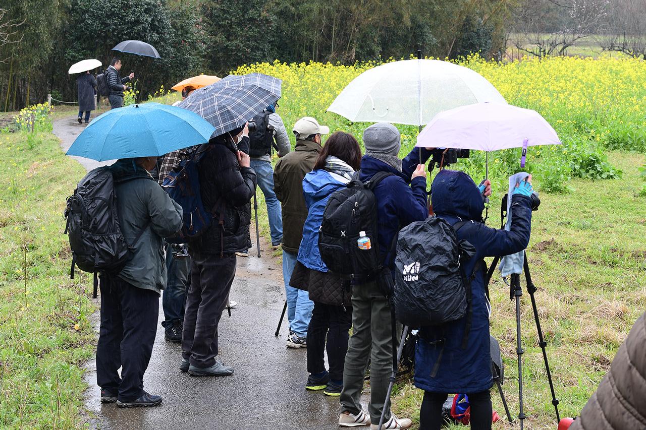 雨も降る中での撮影実習でしたが、参加者のみなさんは生き生きと撮影に取り組んでいました
