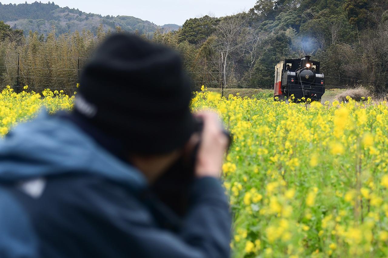 菜の花畑の前で撮影