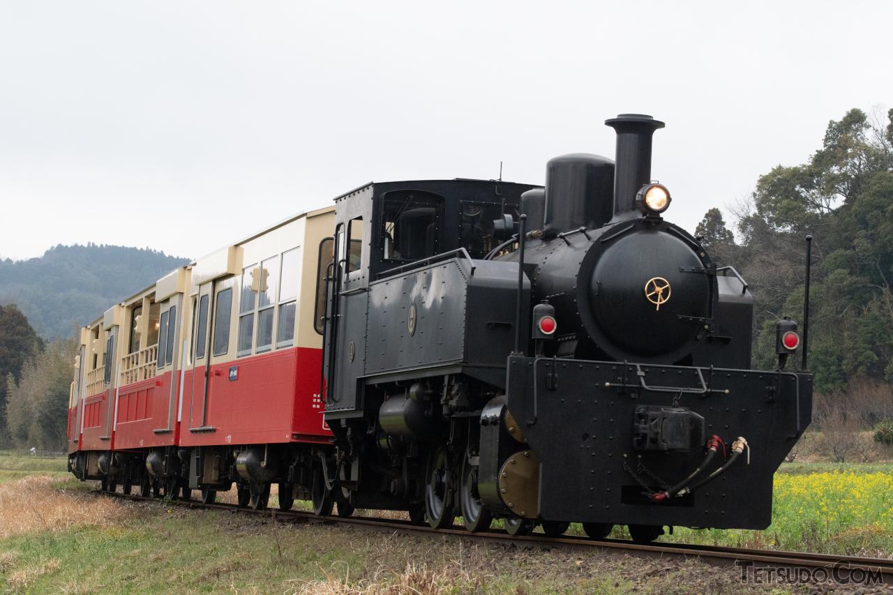小湊鐵道の「房総里山トロッコ列車」は、当面の間運休となっています