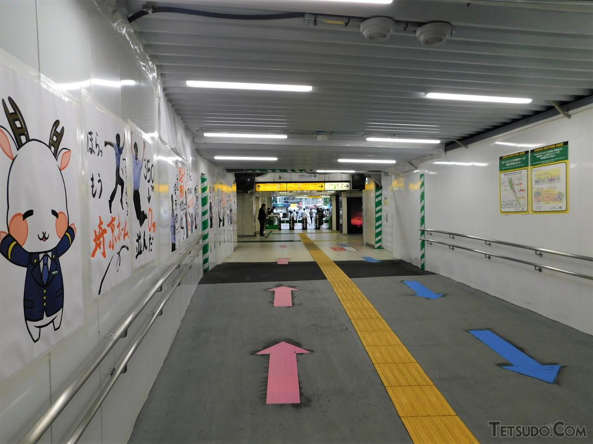 駅改良工事が続く中、ハチ公改札へのコンコースも仮囲い状態です。ハチ公の像は、ここを直進した改札の先にあります