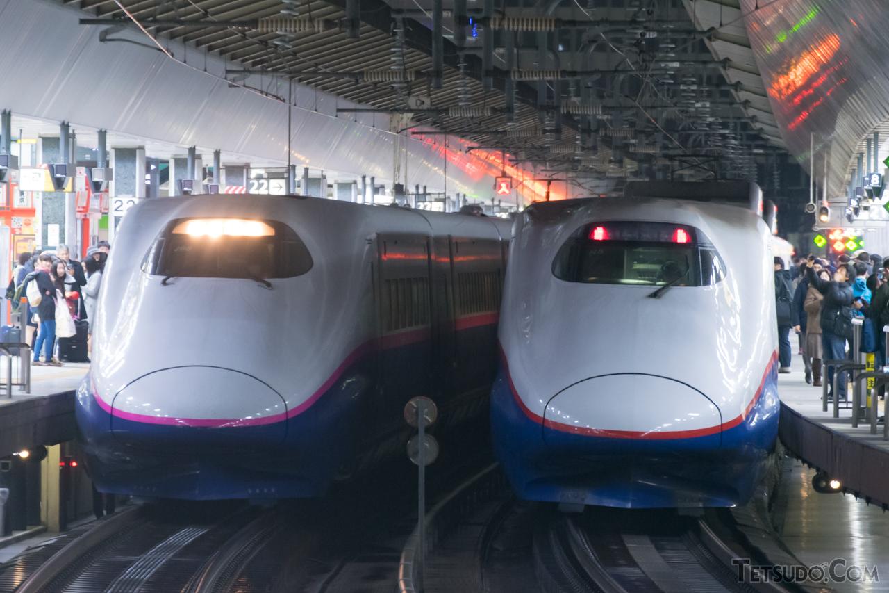 東北新幹線用のJ編成(左)と、北陸新幹線(長野新幹線)用のN編成(右)。デビュー当時はほぼ共通の仕様でした
