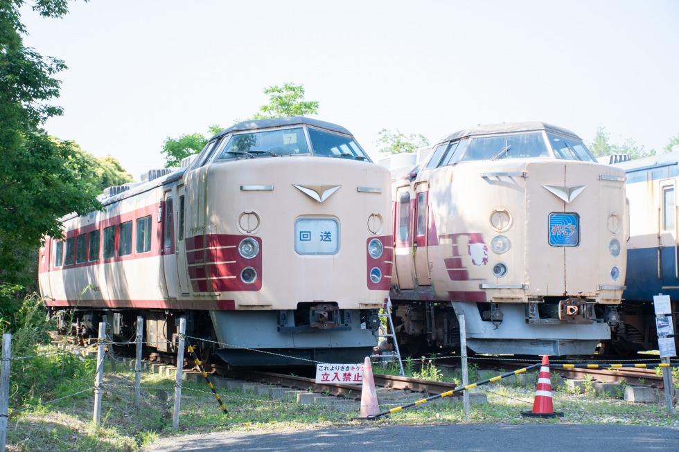 「ポッポの丘」(千葉県いすみ市)に保存される183系たち。このような保存車両では、国鉄特急色は今なお全国各地で見ることができます。