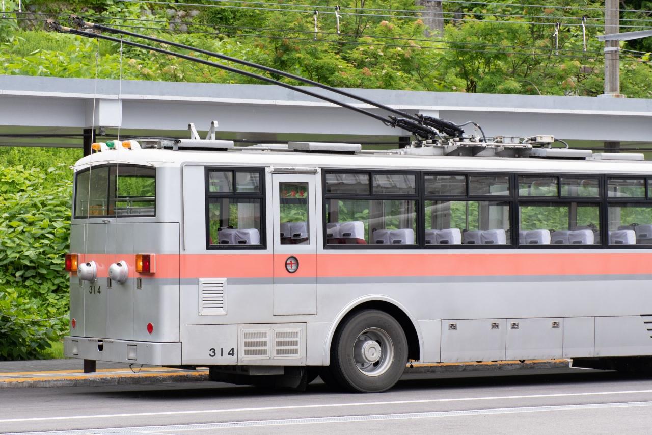屋根上から伸びる黒い部品が、トロリーバスの特徴であるトロリーポール。先端は、架線を包むようなスライダー式となっています。車両後部の2つの丸い部品がレトリバー。ポールから下に延びるワイヤーによって接続しています