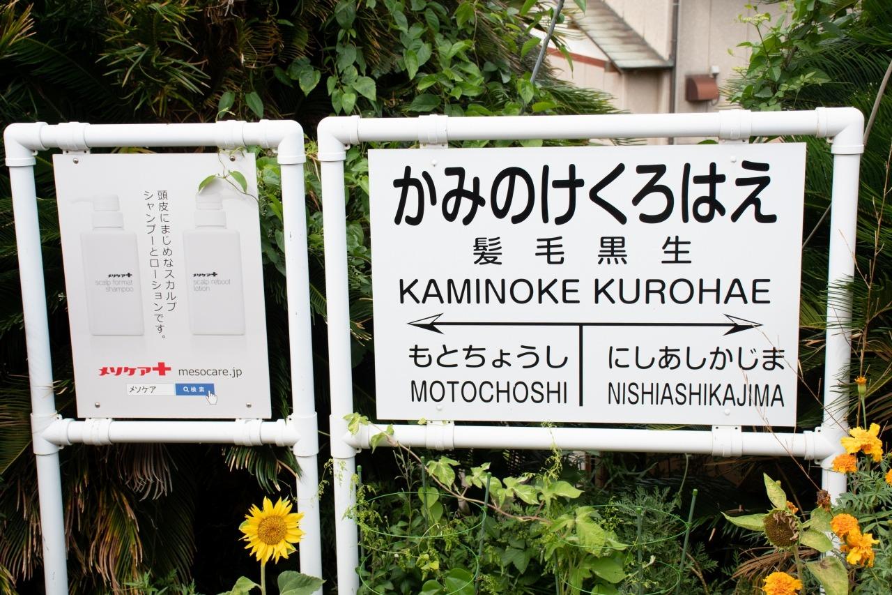 唯一の交換可能駅である笠上黒生駅は、ネーミングライツによって「髪毛黒生(かみのけくろはえ)」の愛称が。もちろんアルジェも放送でアピール