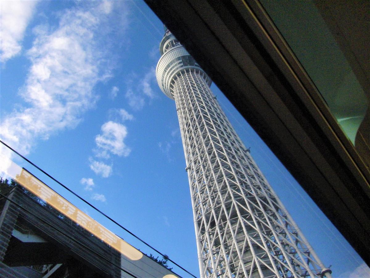 そびえたつ東京スカイツリーの姿を収めることができるのは、スカイツリートレインが誇る天井に届く窓の為せる業。スカイツリービューを楽しむ仕様と言ってもよさそうです。