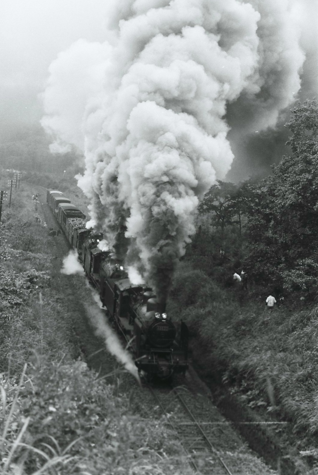 花輪線で運転されていた、8620形三重連による貨物列車です。花輪線は安比高原駅付近を頂上に33パーミルの勾配があり、ここを越える長編成の貨物列車は、機関車を複数両連結した重連で運転されていました。列車によっては3両連結した三重連での運転もあり、多くのファンを引きつけていたようです。1968年に東北本線が全線電化され、沼宮内(現:いわて沼宮内)~一戸間の十三本木峠越えからC61形などのSL三重連が去った後は、この花輪線の龍ヶ森付近がファンにとっての「聖地」となっていました。この写真が撮影されたのは、1971年の7月。花輪線はこの年の秋に無煙化され、蒸気機関車のドラフト音は八幡平から去っていったのでした。花輪線が無煙化され、全列車が気動車に置き換えられた後も、勾配との闘いは続きました。同線には八戸線のような平坦線で使用されていた1エンジン搭載車のキハ40系ではなく、エンジンを2つ搭載したキハ55系やキハ58系が投入されていました。2007年以降に水郡線から転属したキハ110系の導入により車両性能の向上が図られましたが、かつて蒸気機関車を苦しめた勾配は、今も変わらず花輪線の難所として健在です。