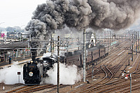 track, outdoor, steam, smoke, railroad, traveling, engine, stack
