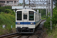 track, train, outdoor, tree, transport, traveling, moving, railroad