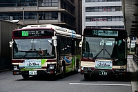 road, outdoor, street, bus, city, driving