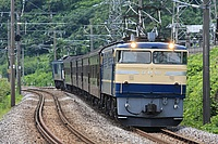 outdoor, tree, train, track, grass, transport, traveling, railroad, wooded, day