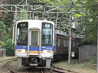 train, tree, outdoor, track, transport, traveling