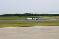 grass, outdoor, plane, sky, runway, airport, airplane, jet, aircraft, tarmac, day, landing