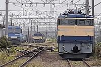 track, outdoor, rail, land vehicle, train, vehicle, locomotive, transport, station, traveling, railroad, day