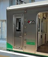 train, door
