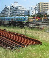 grass, outdoor, train, railroad, rail, vehicle, field, park, land vehicle