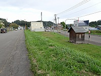 grass, sky, outdoor, road, street, house, tree, curb