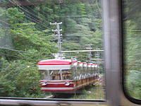 tree, train, vehicle, tram, boat, traveling