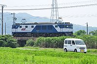 grass, outdoor, sky, vehicle, land vehicle, text, train, traveling, boat, railroad, day, lush