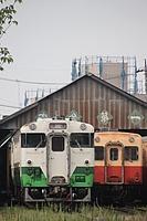 outdoor, grass, land vehicle, transport, vehicle, railroad, train, station, rail, locomotive, traveling