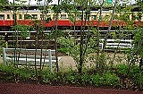 outdoor, grass, plant, fence, outdoor object, farm, farm machine