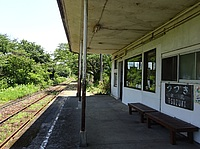 building, tree, station, sky, train