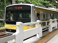 tree, train, land vehicle, vehicle, bus, text