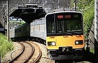 tree, track, outdoor, land vehicle, vehicle, transport, rail, traveling, train, railroad