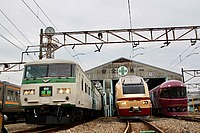 sky, train, outdoor, track, rail, transport, land vehicle, locomotive, vehicle, station, traveling, railroad, several, day