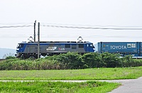 grass, outdoor, sky, road, train, text, plant, vehicle, land vehicle, traveling, highway