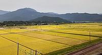 grass, sky, outdoor, mountain, field, road, highland