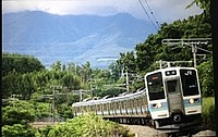 tree, outdoor, text, train, mountain, travel, land vehicle, vehicle, traveling, plant, day