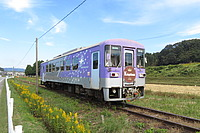grass, sky, outdoor, train, track, transport, land vehicle, vehicle, rail, plant, traveling, railroad